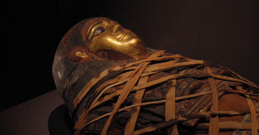 Mummy inside sarcophagus